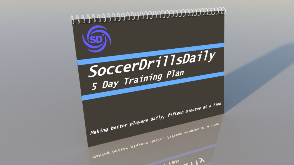 5 Day Training Book3